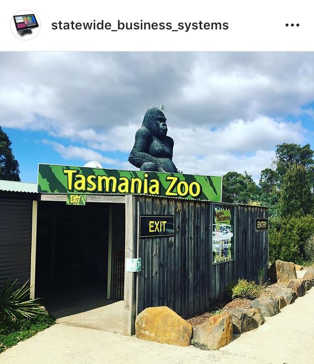 Tasmania Zoo Uniwell Lynx Install